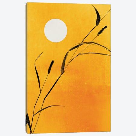 Sunny Side Canvas Print #KUB67} by Kubistika Canvas Art
