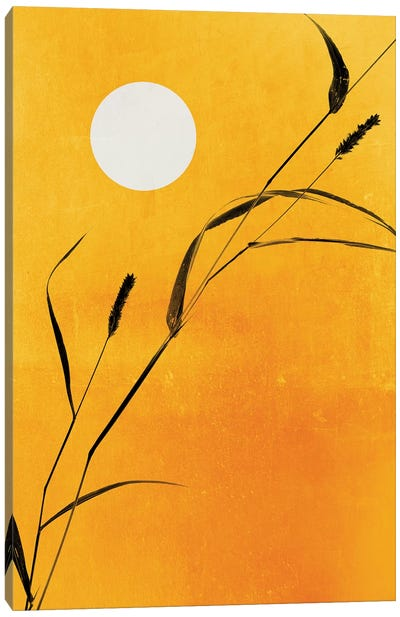 Sunny Side Canvas Art Print