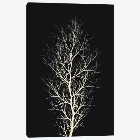 The White Tree Canvas Print #KUB83} by Kubistika Canvas Art Print