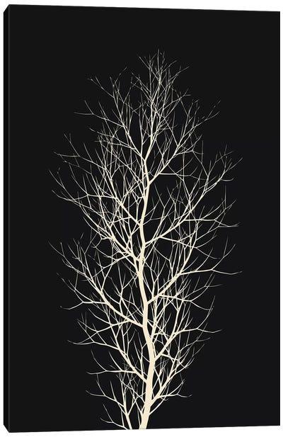 The White Tree Canvas Art Print
