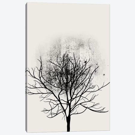 Tree Study No.3 Canvas Print #KUB86} by Kubistika Canvas Wall Art