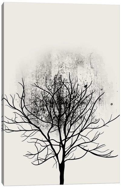 Tree Study No.3 Canvas Art Print