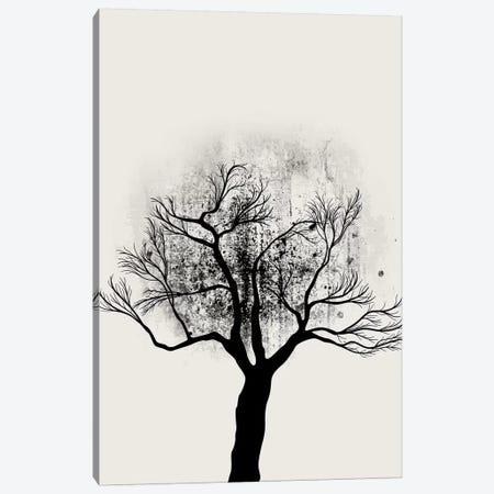 Tree Study No.5 Canvas Print #KUB87} by Kubistika Canvas Wall Art