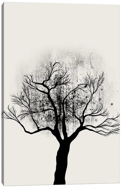 Tree Study No.5 Canvas Art Print