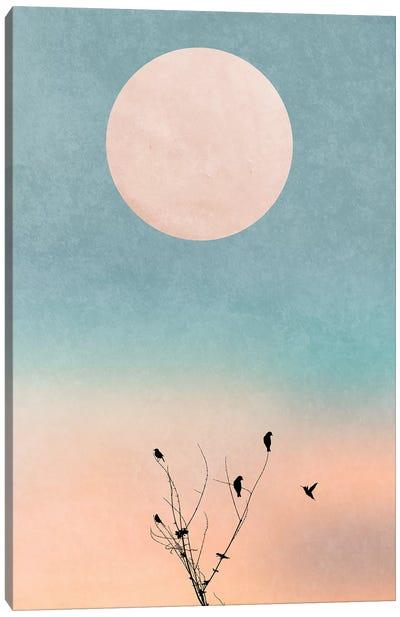 Waking Up Warm Canvas Art Print