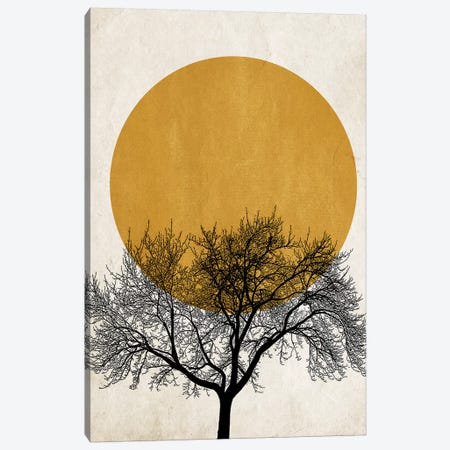 Winter Morning Canvas Print #KUB97} by Kubistika Canvas Print