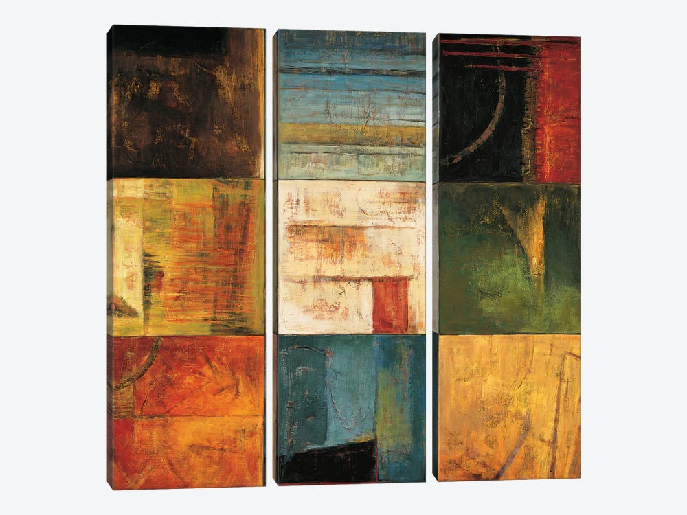 Diversified II by Kurt Morrison 3-piece Canvas Art