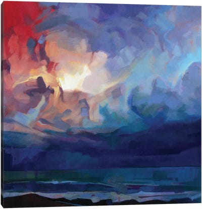 Pampa, Storm Fionn Canvas Art Print