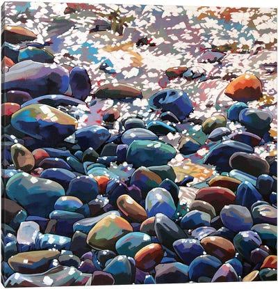 Pebbles IX Canvas Art Print