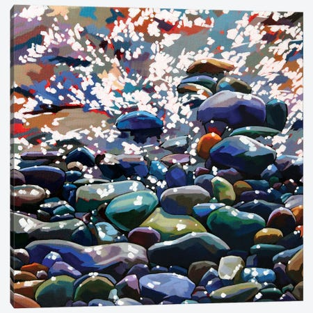 Pebbles XIII Canvas Print #KVL23} by Kevin Lowery Canvas Art Print
