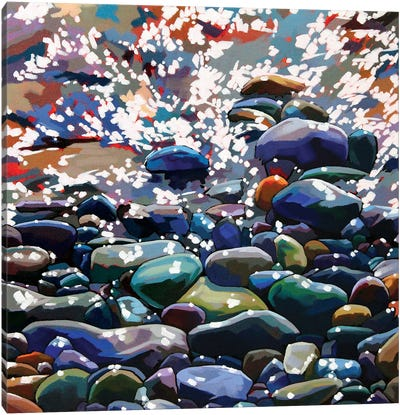 Pebbles XIII Canvas Art Print