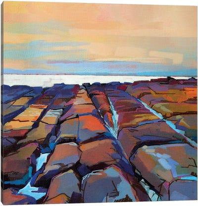 Rocks At Pampa III Canvas Art Print