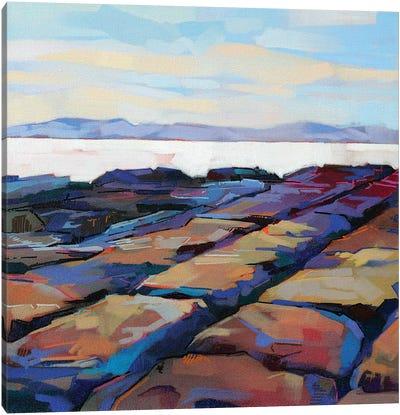 Rocks At Pampa IV Canvas Art Print