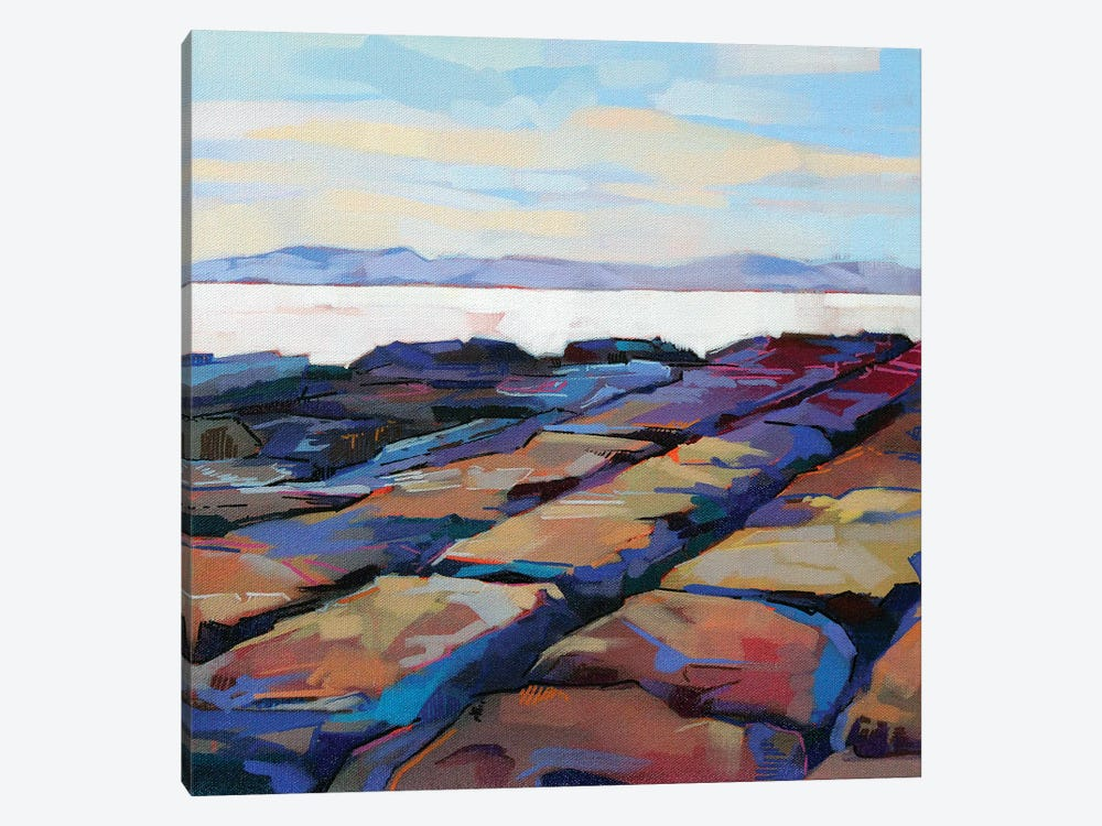 Rocks At Pampa IV by Kevin Lowery 1-piece Canvas Artwork