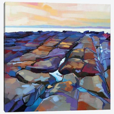 Rocks At Pampa V Canvas Print #KVL29} by Kevin Lowery Art Print