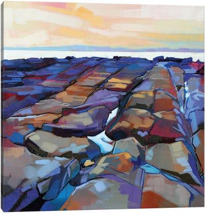 Rocks At Pampa V Canvas Art Print