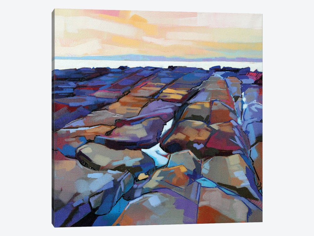 Rocks At Pampa V by Kevin Lowery 1-piece Canvas Print