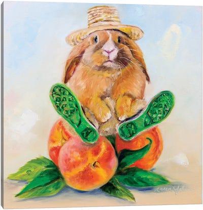 Mr. Easterday's Peaches Canvas Art Print