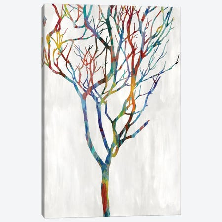 Branches I Canvas Print #KWE1} by Kyle Webster Canvas Art