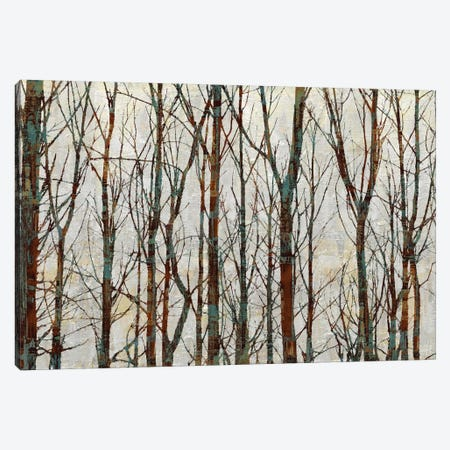 Into The Woods Canvas Print #KWE3} by Kyle Webster Canvas Wall Art