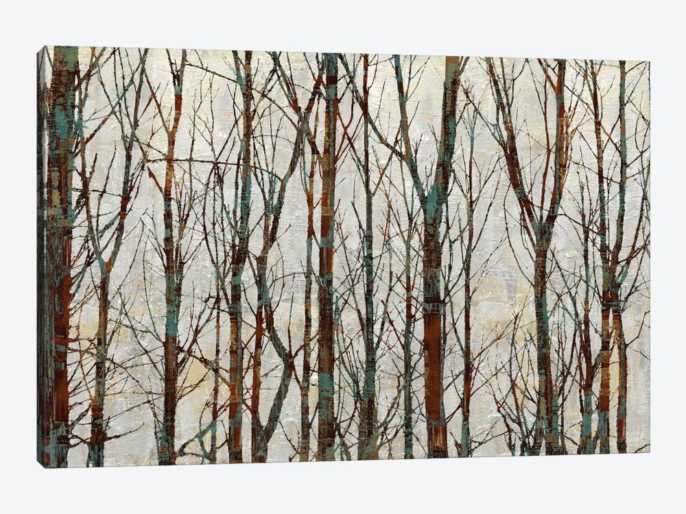 Into The Woods by Kyle Webster 1-piece Canvas Wall Art