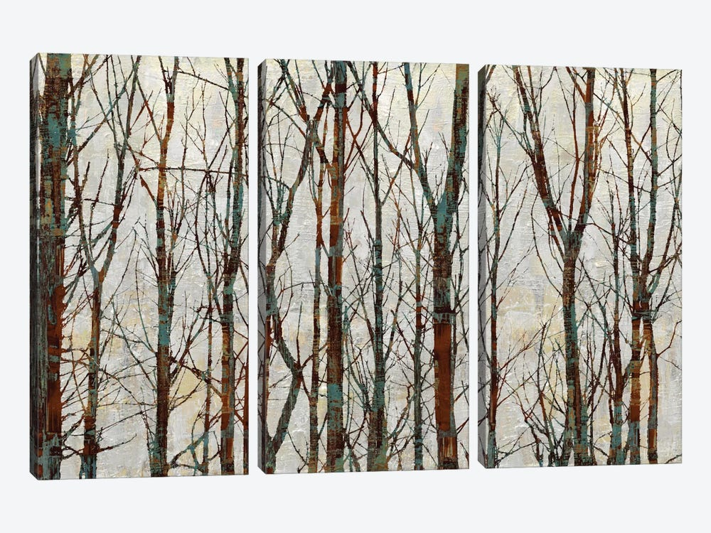 Into The Woods by Kyle Webster 3-piece Canvas Art