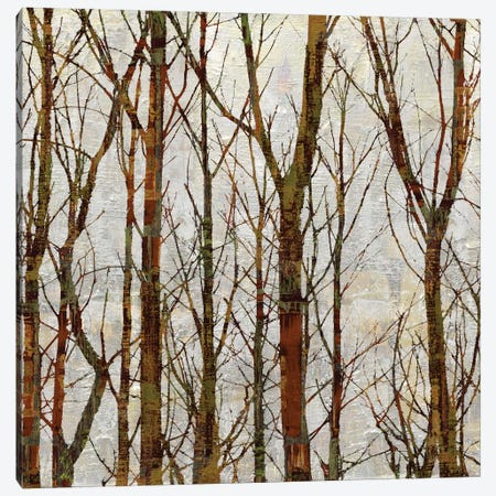 Through The Trees I Canvas Print #KWE6} by Kyle Webster Canvas Print