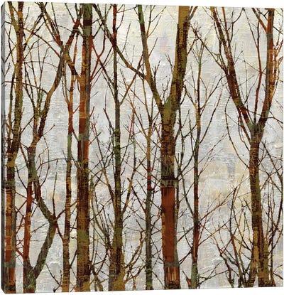 Through The Trees I Canvas Art Print