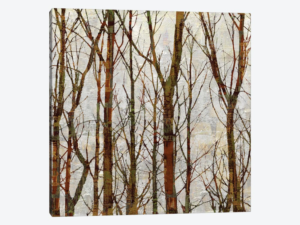 Through The Trees I by Kyle Webster 1-piece Canvas Art Print