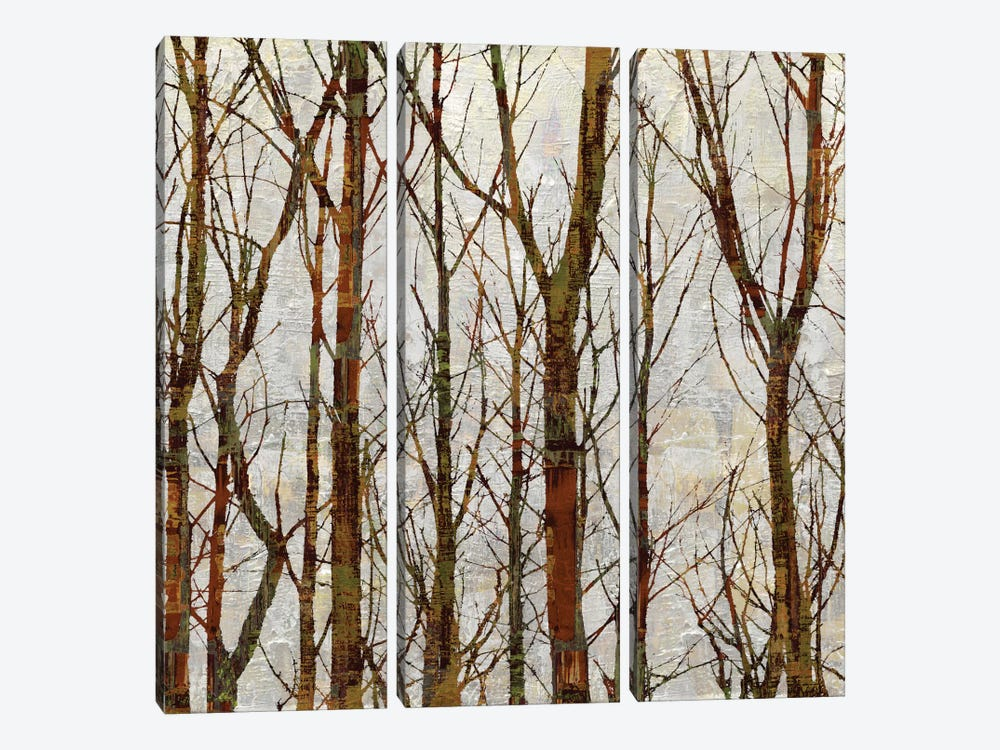 Through The Trees I by Kyle Webster 3-piece Canvas Print