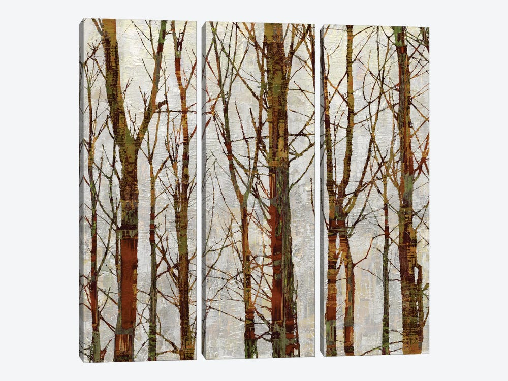 Through The Trees II by Kyle Webster 3-piece Canvas Art