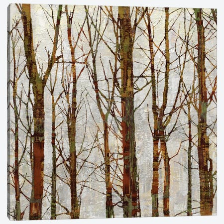 Through The Trees II Canvas Print #KWE7} by Kyle Webster Canvas Art Print