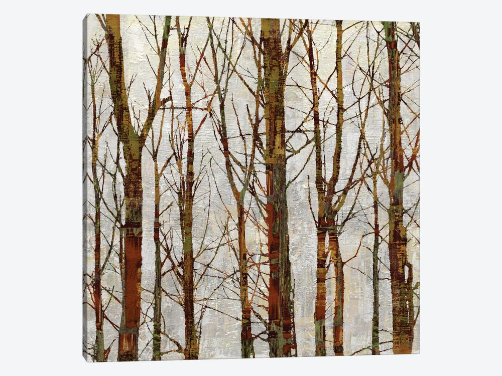 Through The Trees II by Kyle Webster 1-piece Canvas Art