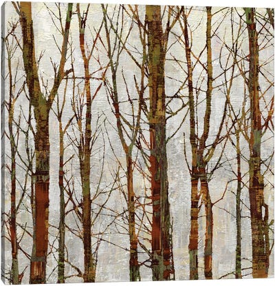 Through The Trees II Canvas Art Print