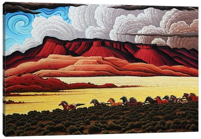 Wild Horses In The Canyonlands Canvas Art Print