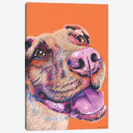 Pitbull On Orange Canvas Print #KWO10} by Kirstin Wood Canvas Wall Art