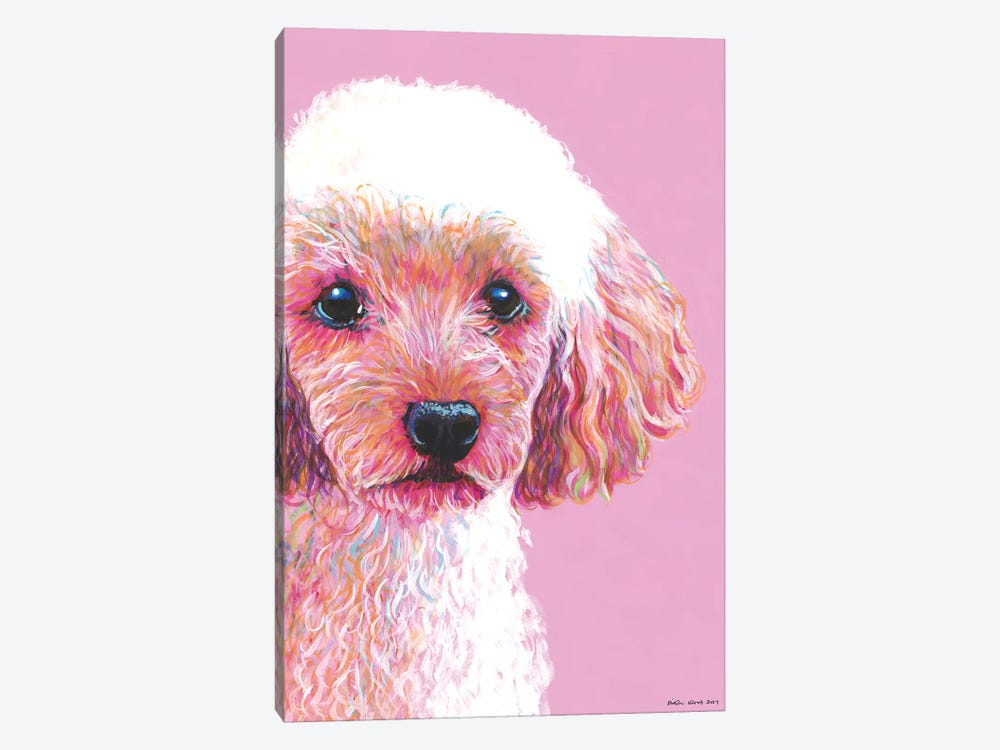 Poodle On Pink by Kirstin Wood 1-piece Canvas Wall Art
