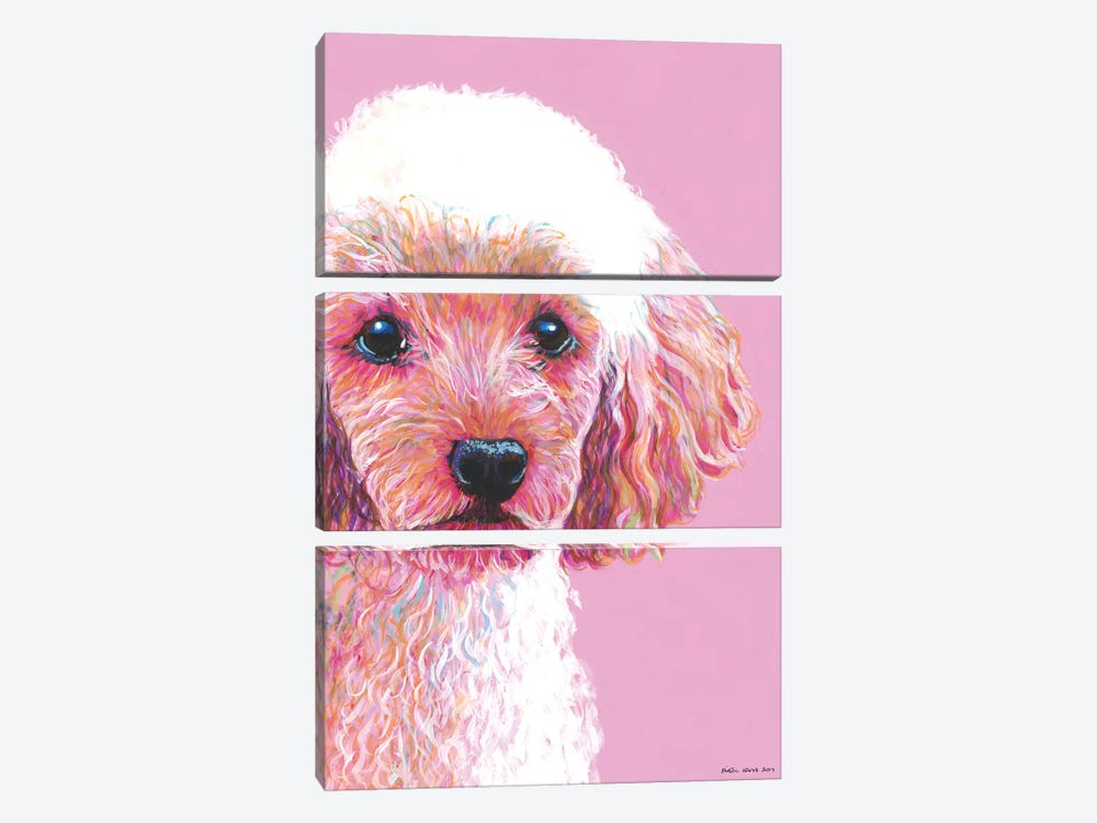 Poodle On Pink by Kirstin Wood 3-piece Canvas Wall Art