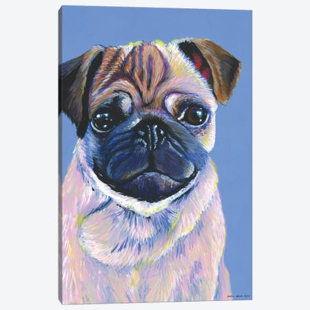Pug On Blue Canvas Print #KWO12} by Kirstin Wood Canvas Art