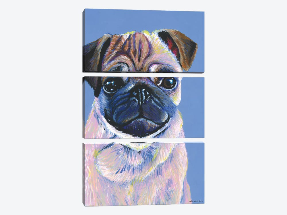 Pug On Blue by Kirstin Wood 3-piece Canvas Art Print
