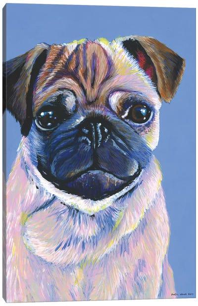Pug On Blue Canvas Art Print