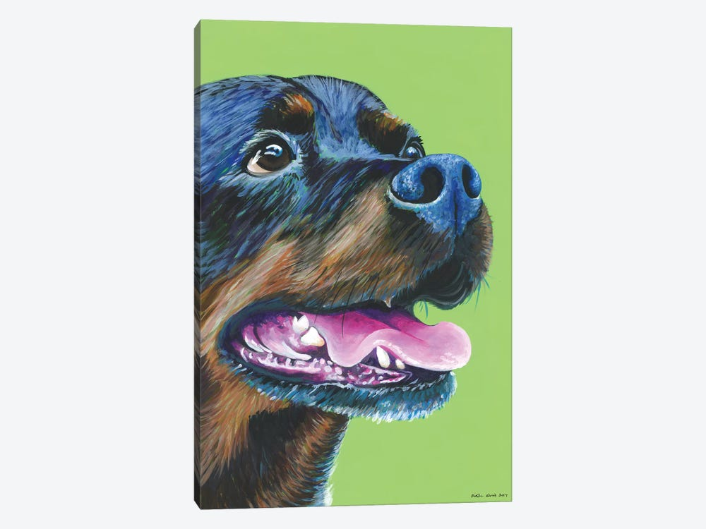 Rottweiller On Lime by Kirstin Wood 1-piece Canvas Wall Art