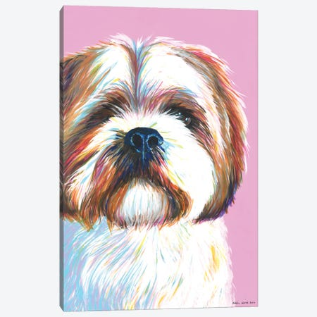 Shih Tzu On Pink Canvas Print #KWO14} by Kirstin Wood Canvas Art Print