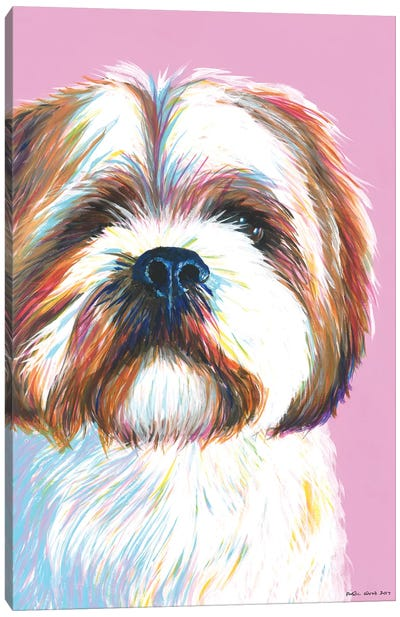Shih Tzu On Pink Canvas Art Print