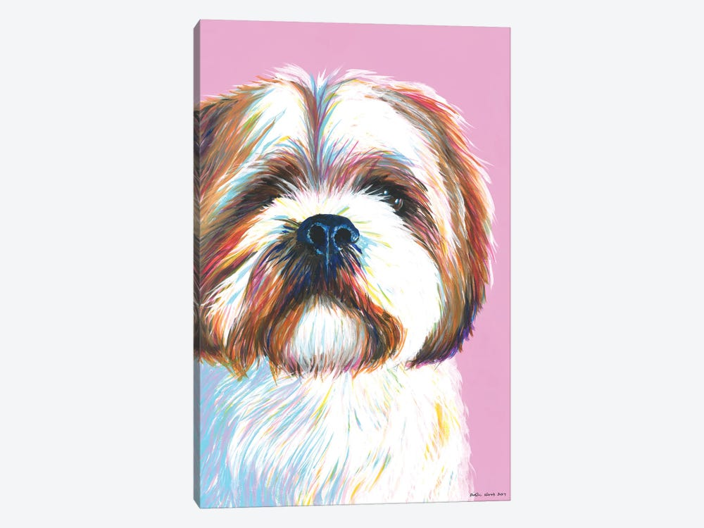 Shih Tzu On Pink by Kirstin Wood 1-piece Canvas Art Print