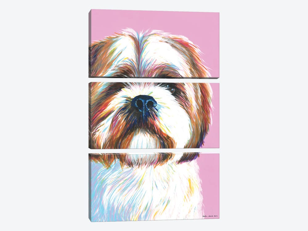 Shih Tzu On Pink by Kirstin Wood 3-piece Art Print