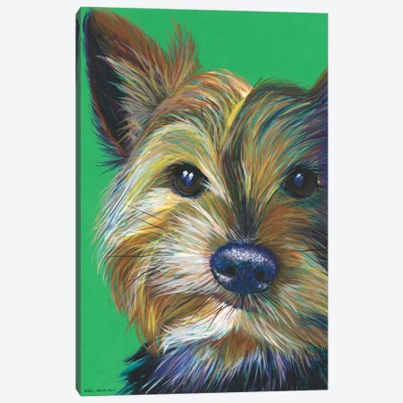 Yorkshire Terrier On Emerald Canvas Print #KWO16} by Kirstin Wood Art Print