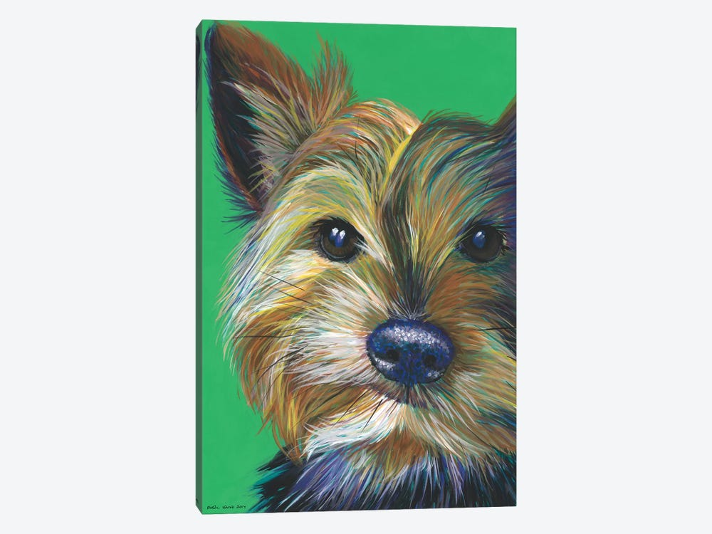 Yorkshire Terrier On Emerald by Kirstin Wood 1-piece Canvas Print