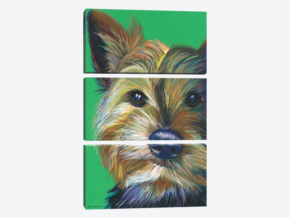 Yorkshire Terrier On Emerald by Kirstin Wood 3-piece Canvas Print