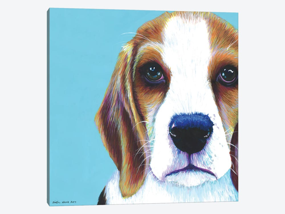 Beagle On Aqua, Square by Kirstin Wood 1-piece Canvas Wall Art